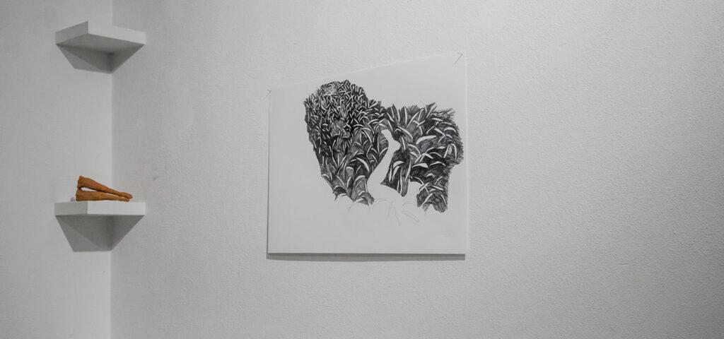 Disegni - Barbara Baroncini